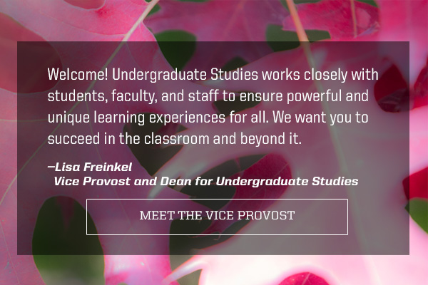 Welcome! Undergraduate Studies works closely with students, faculty, and staff to ensure powerful and unique learning experiences for all. We want you to succeed in the classroom and beyond it. — Lisa Freinkel, vice provost for Undergraduate Studies